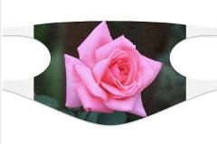 Rosen-Maske01