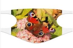 Schmetterling-Maske