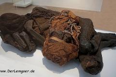 Mumie-Hamm