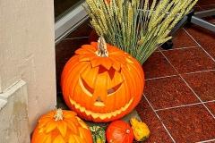 Halloween-Kuerbisse-k