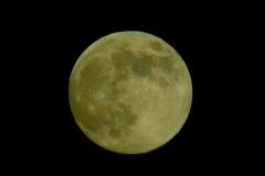 Mond-b