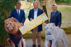 CWulff-Löwen-für-Löwen-Zoo-OS
