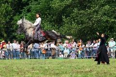 PferdeStark10