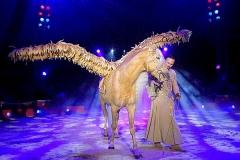 Flügelpferd-Zirkus